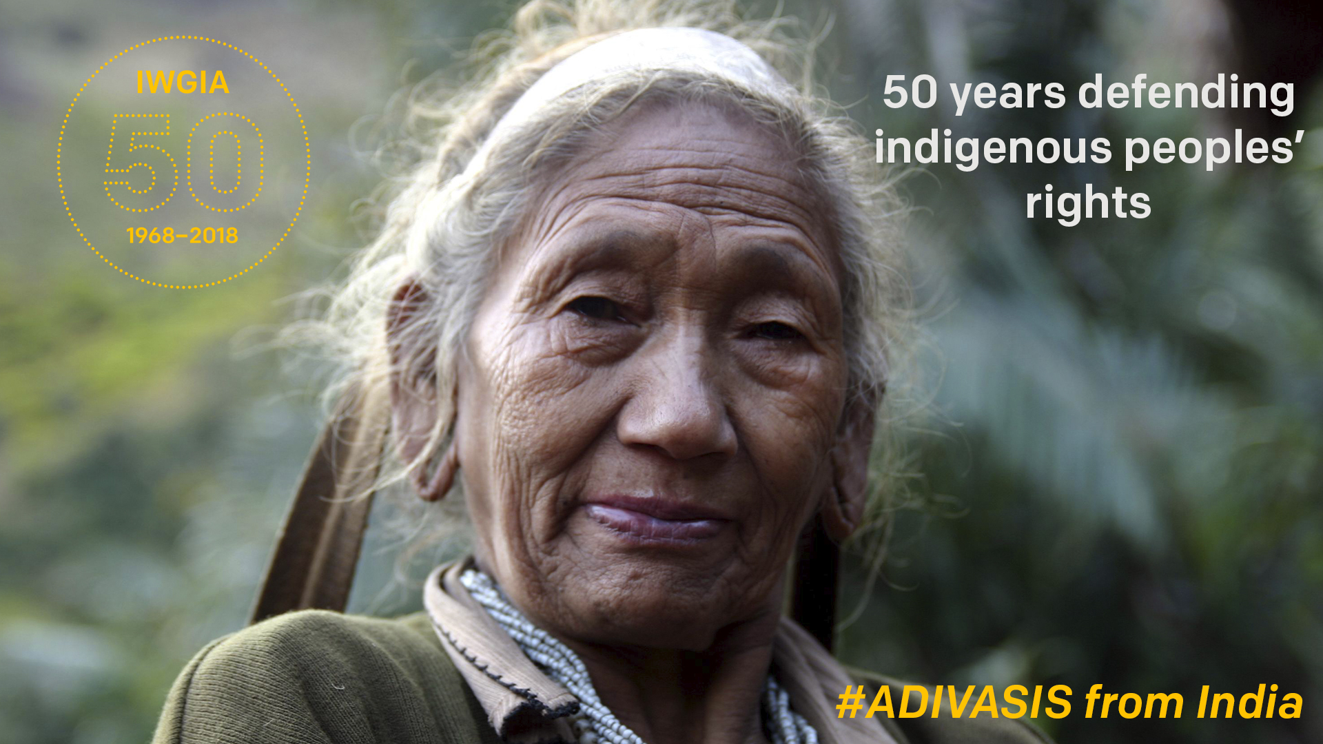 50 years defending indigenous peoples' rights