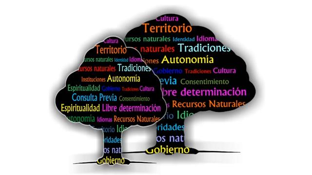 Protocolos autonómicos de consulta y consentimiento en pueblos indígenas - Parte II
