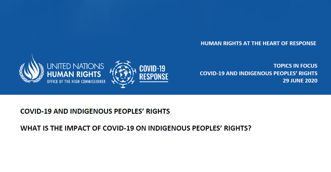 UN OHCHR Report cover - COVID-19 and Indigenous Peoples' Rights