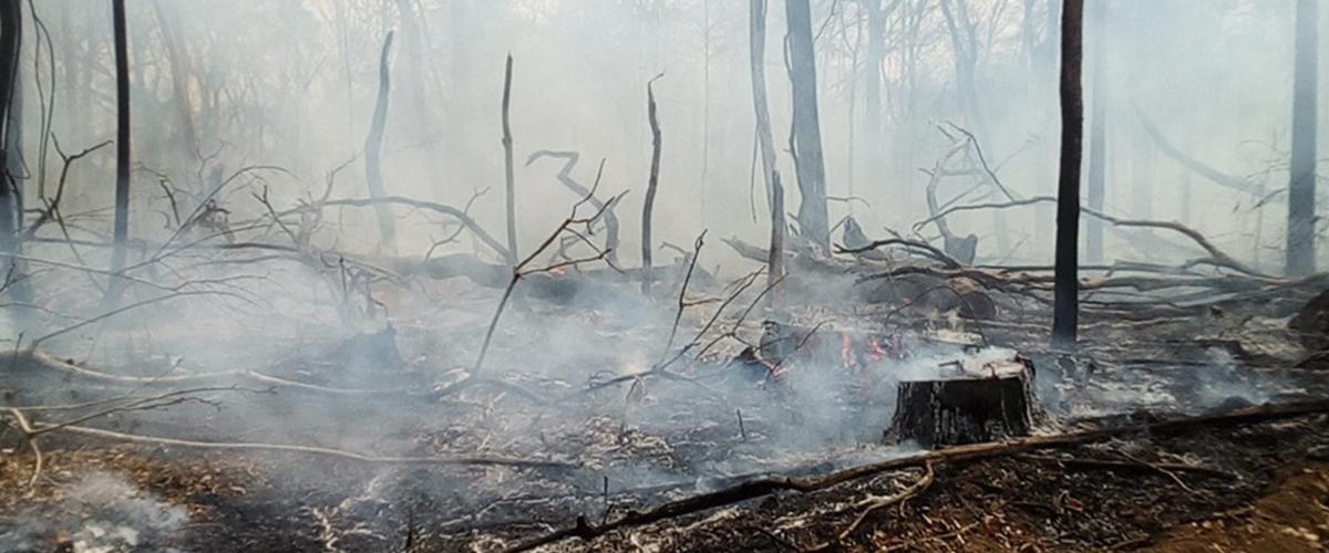 Fires in the Monte Verde Indigenous Territory in Bolivia. Photo: Territoria Indígena Monteverde