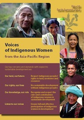 Voices of Indigenous <span class=