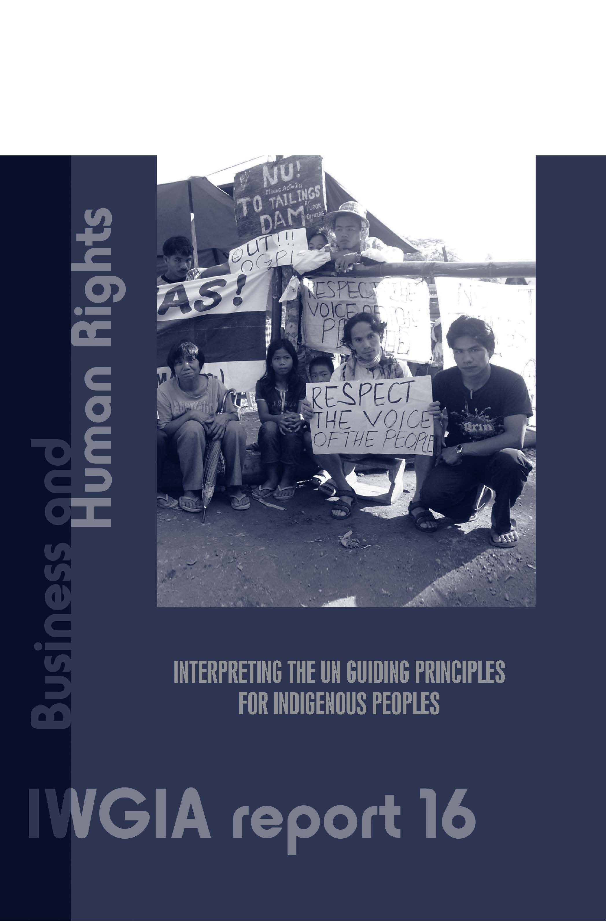 Business and Human Rights: Interpreting the UN Guiding Principles for Indigenous Peoples