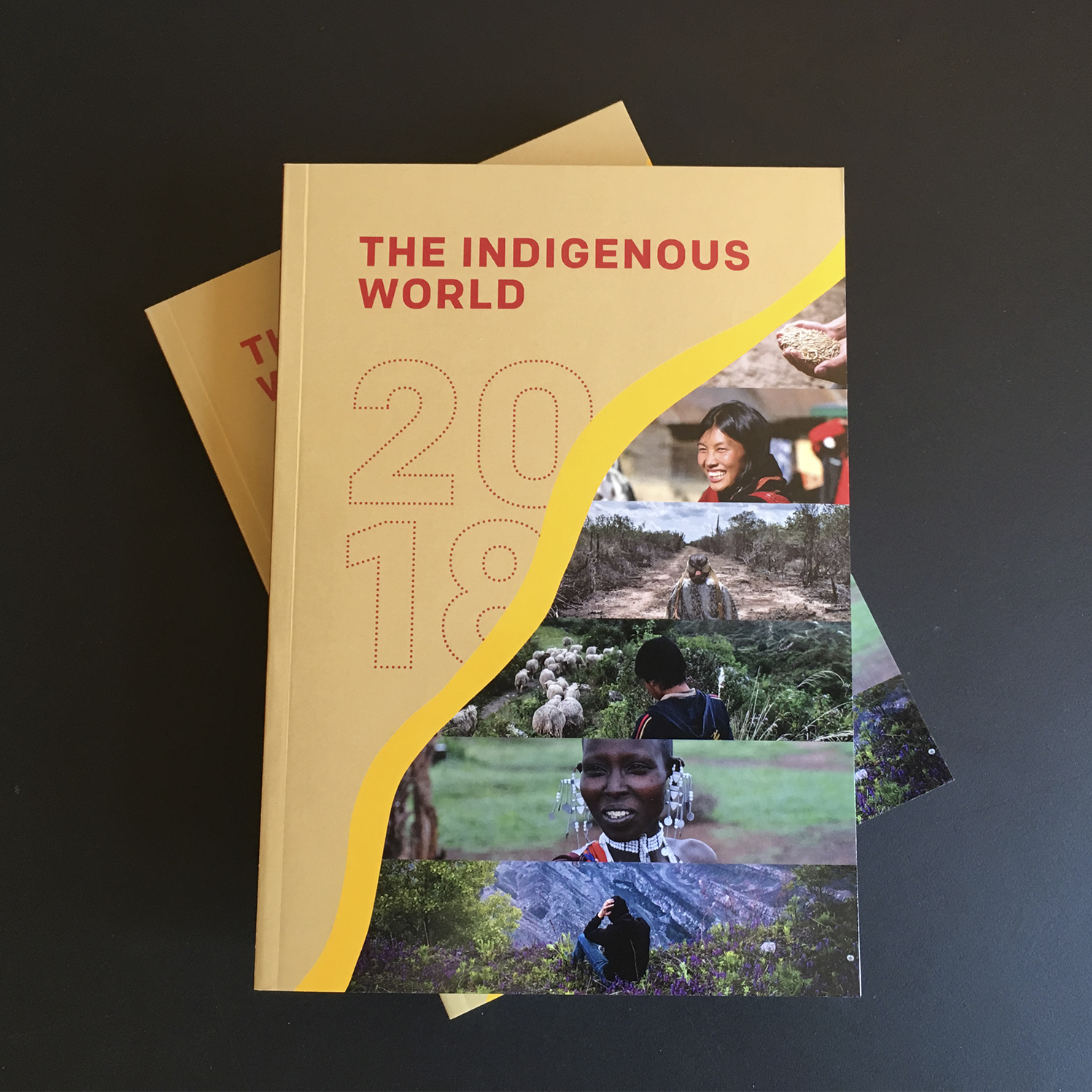 The Indigenous World 2018